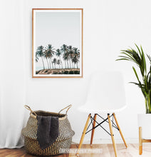 Load image into Gallery viewer, Palm Trees Tropical Photo Wall Art