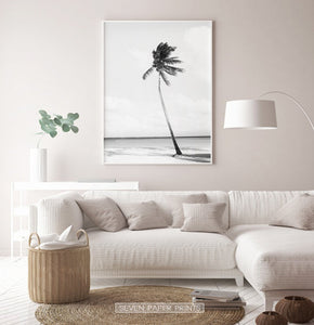 Black and white tropical decor idea for living room