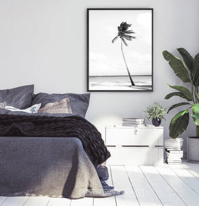 Black And White Palm Wall Art