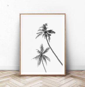 Black and White Palm Trees Wall Art Print