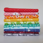 Chasing Rainbows - Fat Quarter Bundle