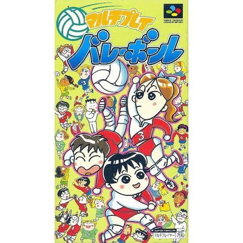 Image for Multi Play Volleyball