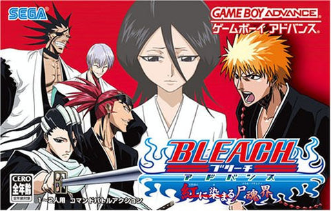 Image for Bleach Advance