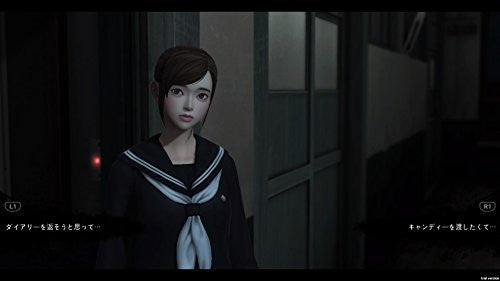Image 2 for WhiteDay: A Labyrinth Named School