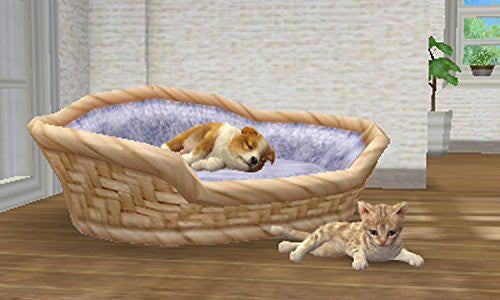Image 4 for Nintendogs + Cats: Shiba & New Friends (Happy Price Selection)