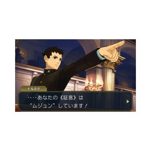 Image 2 for Daigyakuten Saiban: Naruhodou Ryuunosuke no Bouken [Limited Edition]