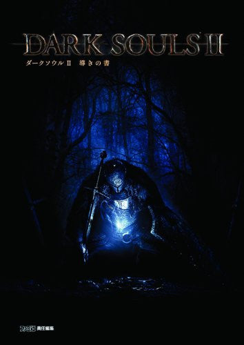 Image 1 for Dark Soul Ii Michibiki No Sho