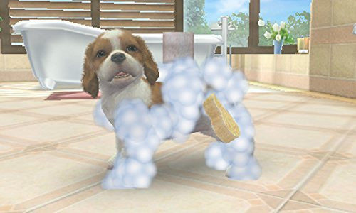 Image 5 for Nintendogs + Cats: Shiba & New Friends (Happy Price Selection)