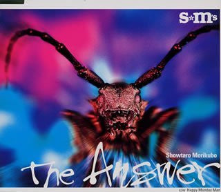 Image for The Answer / Showtaro Morikubo