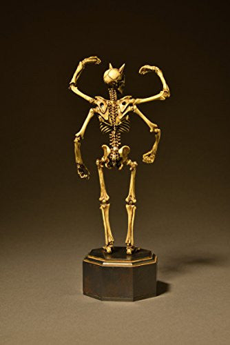 Image 4 for Skeleton - KT Project KT-006 - Revoltech - Revoltech Takeya - Color (Kaiyodo)