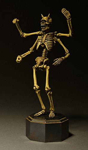 Image 12 for Skeleton - KT Project KT-006 - Revoltech - Revoltech Takeya - Color (Kaiyodo)