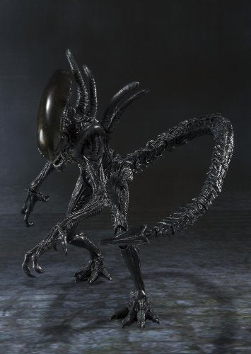 Image 7 for Alien Vs Predator - Alien Warrior - S.H.MonsterArts (Bandai)