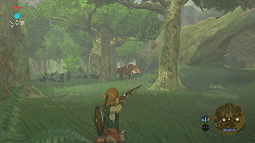 Image 5 for The Legend of Zelda: Breath of the Wild