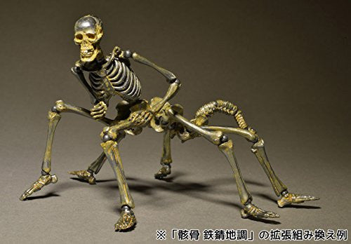 Image 8 for Skeleton - KT Project KT-005 - Revoltech - Revoltech Takeya - Iron Rust (Kaiyodo)