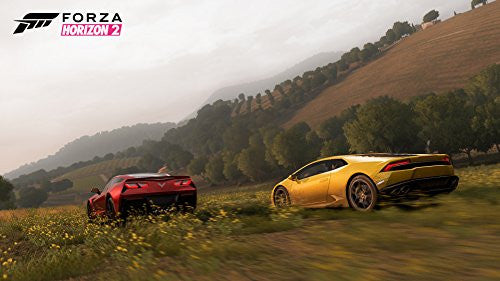 Image 12 for Forza Horizon 2