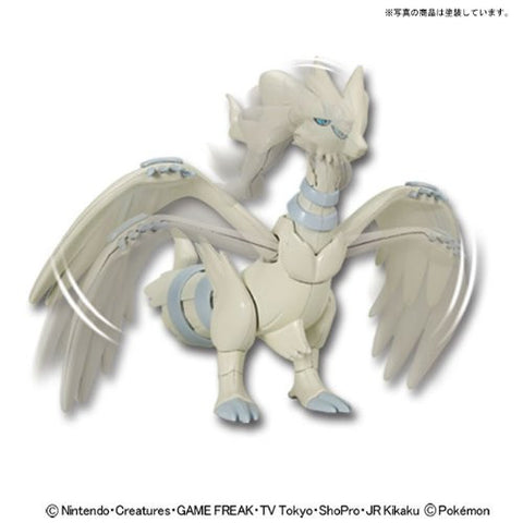 Image for Pocket Monsters - Reshiram - Pokemon Plamo (Bandai)