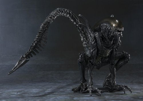Image 9 for Alien Vs Predator - Alien Warrior - S.H.MonsterArts (Bandai)