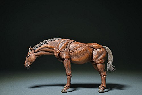 Image 10 for KT Project KT-008 - Revoltech - Horse - Color (Kaiyodo)