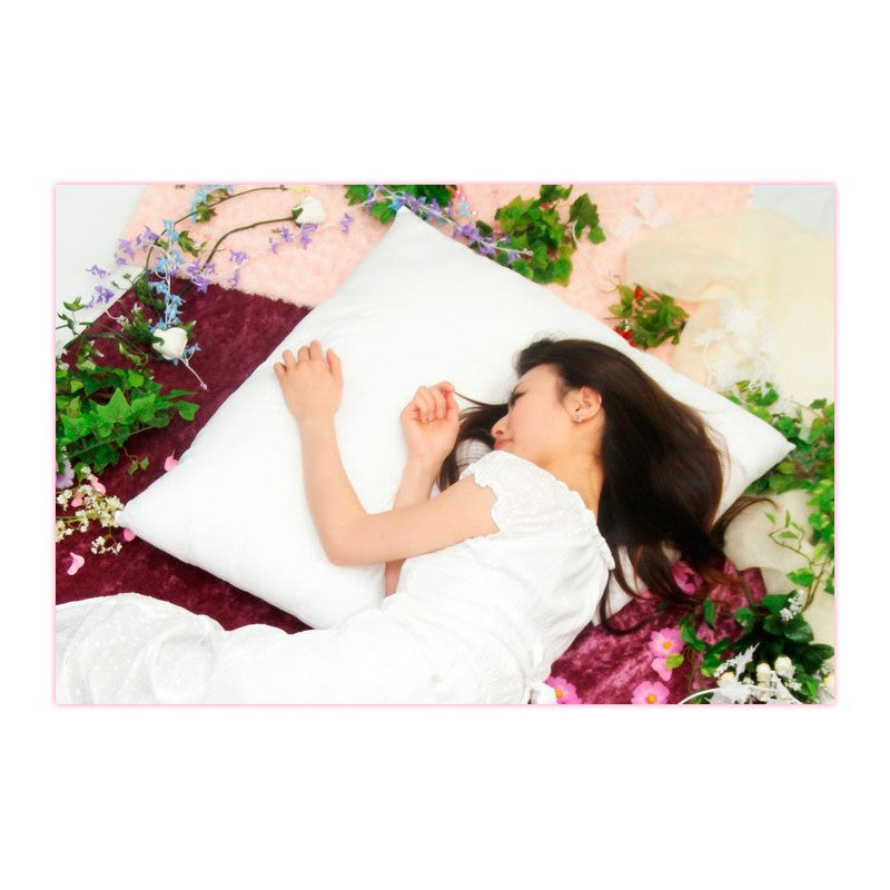 Image 4 for Dream☆Cushion - 950g