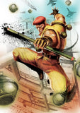 Thumbnail 12 for Ultra Street Fighter IV [Collector's Package]