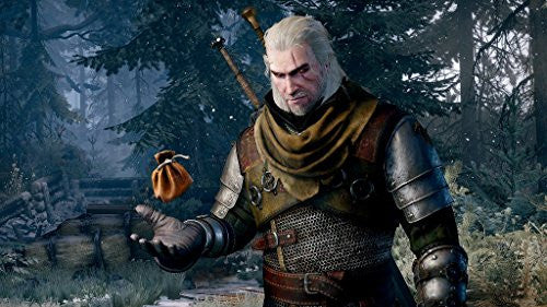 Image 4 for The Witcher 3: Wild Hunt