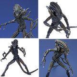 Thumbnail 6 for Aliens - Alien Warrior - Revoltech - Revoltech SFX #016 (Kaiyodo)