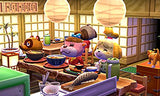 Thumbnail 9 for Doubutsu no Mori: Happy Home Designer [NFC Reader & Writer Bundle Set]