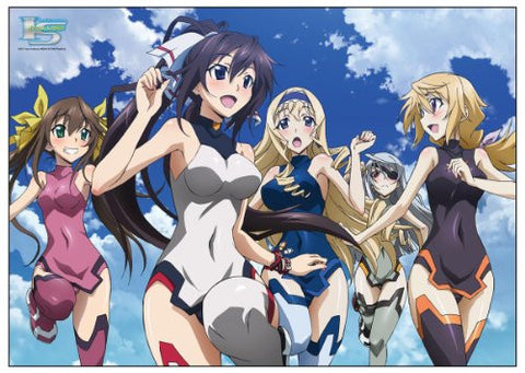 Image for IS: Infinite Stratos - Shinonono Houki - Cecilia Alcott - Laura Bodewig - Huang Lingyin - Charlotte Dunois - Towel (Chara-Ani, Media Factory)