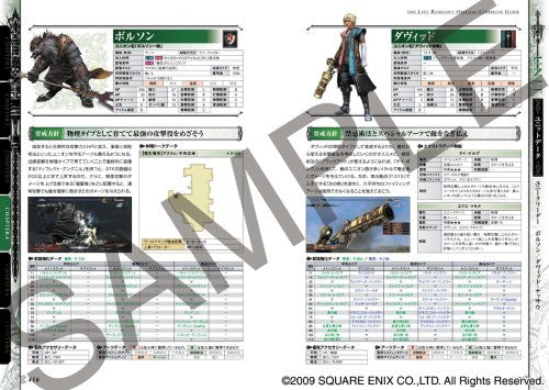 Image 5 for The Last Remnant Official Complete Guide