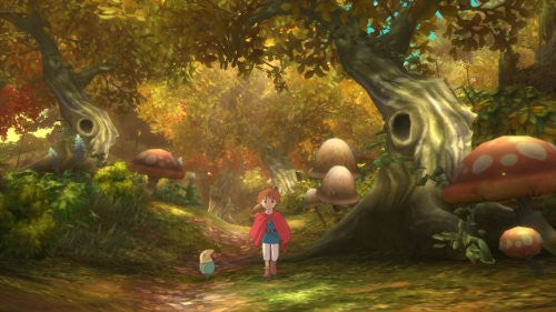 Image 3 for Ninokuni: Shiroki Seihai no Joou
