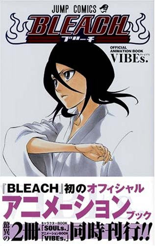 Image 1 for Bleach   Official Animation Book Vib Es