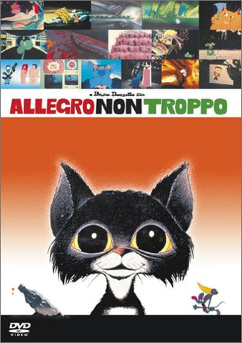 Image for Allegro Non Tropp