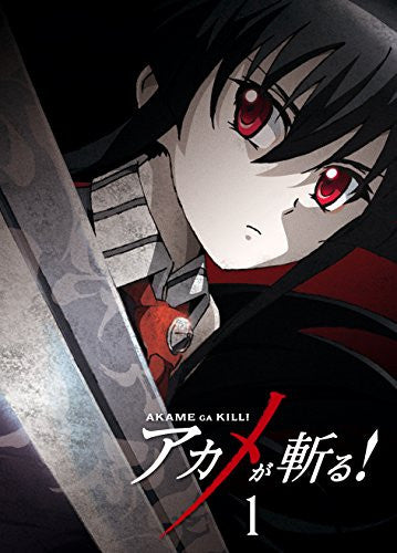Image 2 for Akame Ga Kill Vol.1