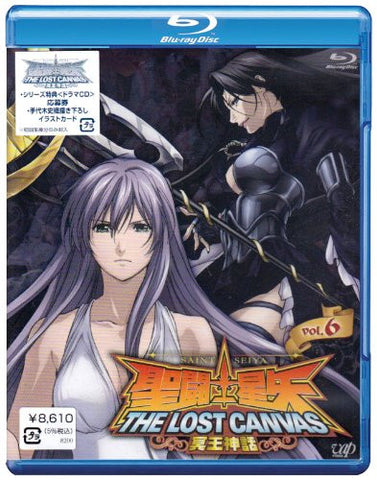 Image for Saint Seiya The Lost Canvas Hades Mythology Vol.6