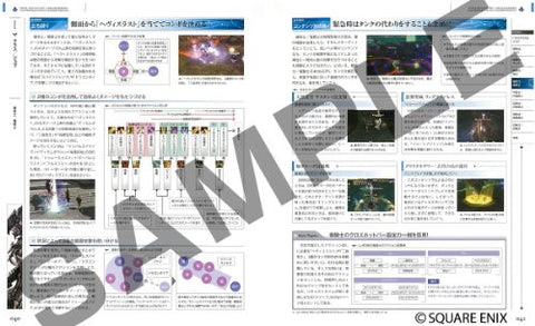 Image for Final Fantasy Xiv: Shinsei Eorzea World Report Patch 2.1 Class/Job/Data