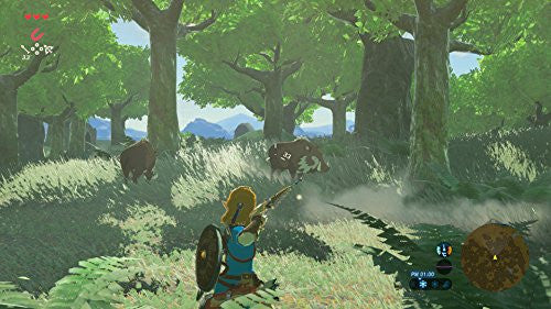 Image 16 for The Legend of Zelda: Breath of the Wild
