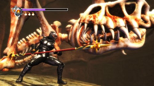 Image 6 for Ninja Gaiden Sigma (PlayStation3 the Best) [New Price Version]