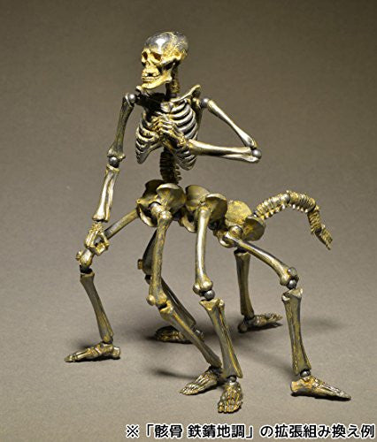 Image 7 for Skeleton - KT Project KT-005 - Revoltech - Revoltech Takeya - Iron Rust (Kaiyodo)
