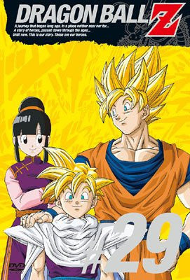Image for Dragon Ball Z Vol.29