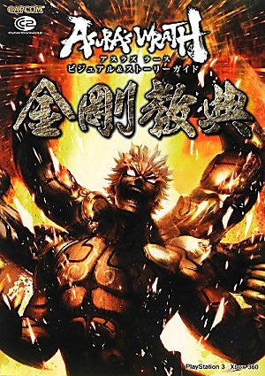 Image for Asura's Wrath Visual And Story Guide