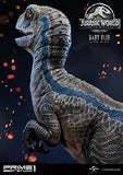 Jurassic World: Fallen Kingdom - Blue - Legacy Museum Collection LMCJW2-02 - 1/1 - Baby (Prime 1 Studio)  - 7