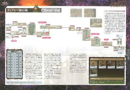 Image 3 for Ys The Oath In Felghana Official Strategy Guide Book / Psp Windows, Online Game