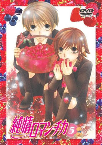 Image for Junjo Romantica Vol.5