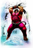 Ultra Street Fighter IV [Collector's Package] - 10