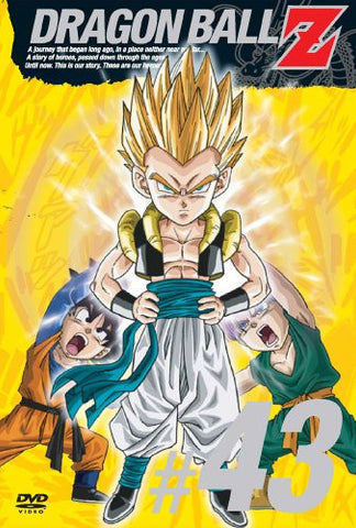 Image for Dragon Ball Z Vol.43
