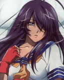 Thumbnail 2 for Ikki Tousen Great Guardians - Kan'u Unchou - Dakimakura Cover (Ensky)