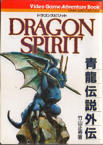 Image for Dragon Spirit   Seiryu Densetsu Gaiden Game Book / Rpg