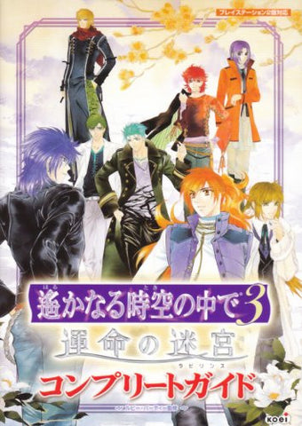 Image for Harukanaru Toki No Naka De 3 Unmei No Meikyu Complete Guide Book / Ps2