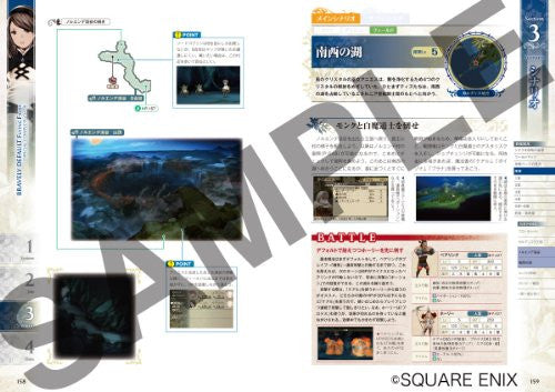 Image 8 for Bravely Default: Flying Fairy Official Complete Guide