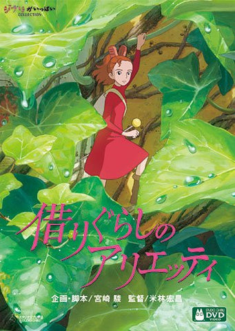 Image for The Borrower Arrietty
